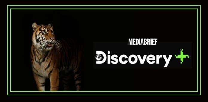 image-6-documentaries-discovery-plus-international-tiger-day-MediaBrief.jpg