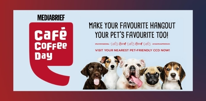 image-CCD-allows-pets-outdoor-seating-MediaBrief.jpg
