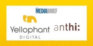 image-Yellophant-Digital-bags-mandate-For-anthi_-mediabrief.jpg