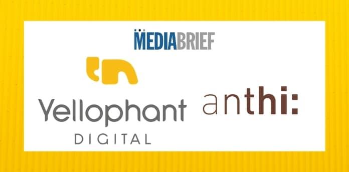 image-Yellophant-Digital-bags-mandate-For-anthi_-mediabrief.jpg