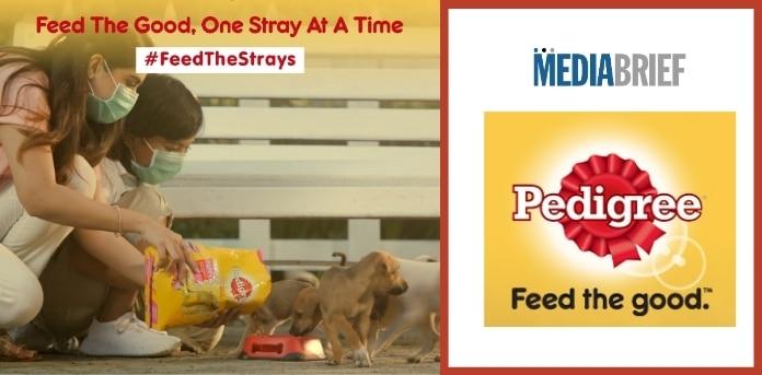 Image-FeedtheStray-says-Pedigree-India-new-ad-campaign-MediaBrief.jpg
