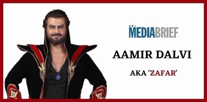 Image-Zafar-best-roles-in-20-years-Aamir-Dalvi-MediaBrief.jpg