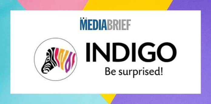 Image-Indigo-Paints-IPO-subscribed-117.02-times-on-final-dayMediaBrief.jpg