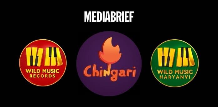 Image-Chingari-collaboration-Wild-Music-Records-MediaBrief.jpg