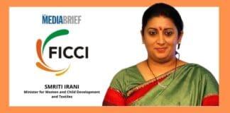 image-Smriti-Irani-on-Indian-toy-market_-mediabrief.jpg