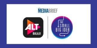 Image-TheSmallBigIdea-social-media-duties-ALTBalaji-MediaBrief.jpg