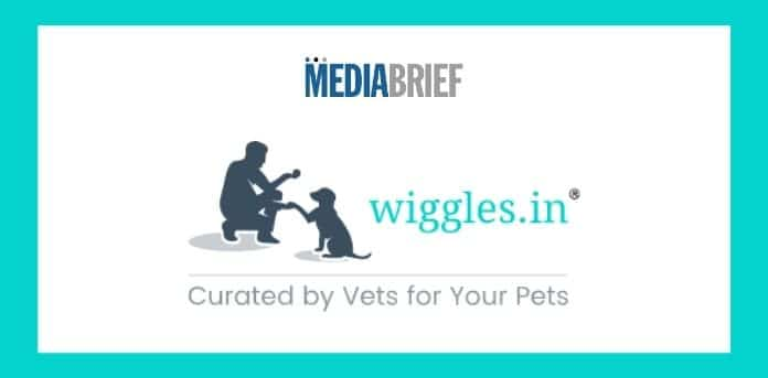 Image-Wiggles-'SheIsABitch-campaign-mediabrief.jpg