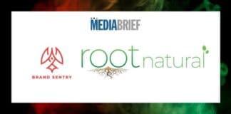 Image-Brand-Sentry-bags-PR-Mandate-for-Root-Natural-MediaBrief.jpg