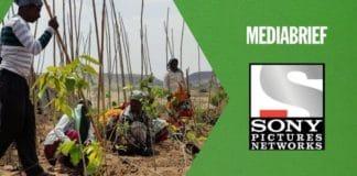 Image-Sony-Pictures-Networks-plants-8000-saplings-MediaBrief-1.jpg