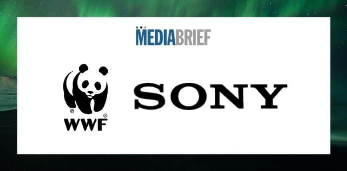 Image-WWF-Japan-Sony-ink-partnership-agreement-MediaBrief.jpg