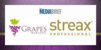 Image-Grapes-Digital-appointed-AOR-for-Streax-Professional-MediaBrief.jpg