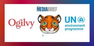 Image-Ogilvy-wildlife-trafficking-awareness-campaign-UNEP-MediaBrief.jpg